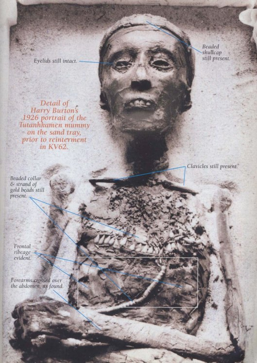 Original photo (1926) of the king's mummy (adapted from Kmt magazine).