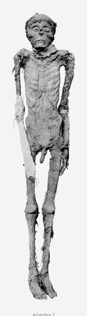 Mummy of Ahmose I, Dynasty 18